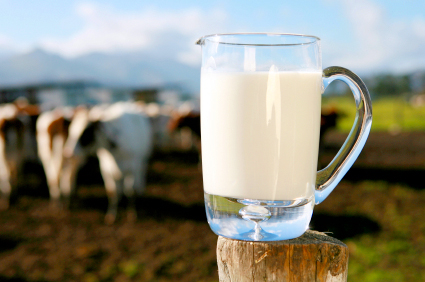 Fresh milk keeps infections at bay